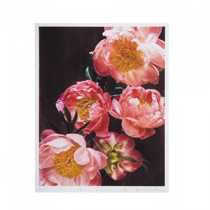flower photo - MIXING ART STYLES IN YOUR HOME by popular home interior design blogger E. INTERIORS